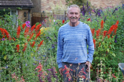 Robin in amongst his Salvias